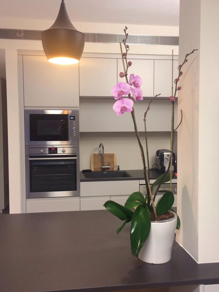 KT-apartment-3